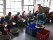 Indien_2009_0025
