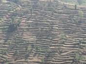 Nepal_2009_0070