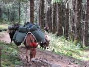 Buthan_Trekking_2010_0007