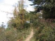 Buthan_Trekking_2010_0021