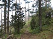Buthan_Trekking_2010_0022