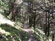 Buthan_Trekking_2010_0026