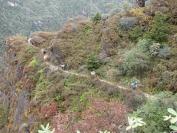 Buthan_Trekking_2010_0040