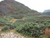 Buthan_Trekking_2010_0052