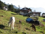 Buthan_Trekking_2010_0068
