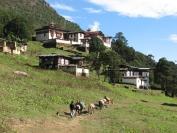 Buthan_Trekking_2010_0070
