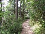Buthan_Trekking_2010_0074