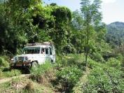 Indien_2010_0042