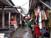 Indien_2010_0103
