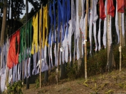 Indien_2012_Darjeeling_0026