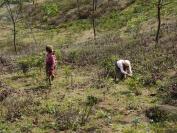 Indien_2012_Darjeeling_0032