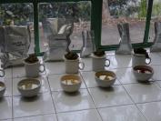 Indien_2012_Darjeeling_0055