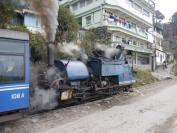 Indien_2012_Darjeeling_0084
