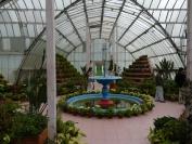 Indien_2012_Darjeeling_0091