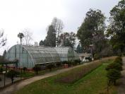 Indien_2012_Darjeeling_0093