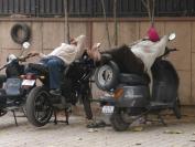 Indien_2012_Delhi_0029