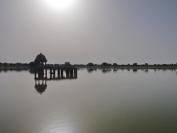 Indien_2012_Rajasthan_0039