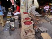 Indien_2012_Rajasthan_0067