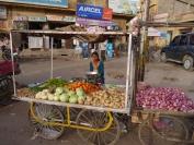 Indien_2012_Rajasthan_0071