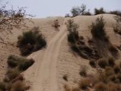 Indien_2012_Rajasthan_0084
