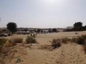 Indien_2012_Rajasthan_0092