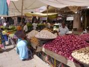 Indien_2012_Rajasthan_0118