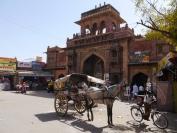 Indien_2012_Rajasthan_0124