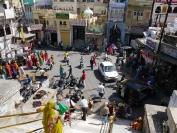 Indien_2012_Rajasthan_0182