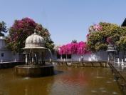 Indien_2012_Rajasthan_0192