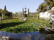 Indien_2012_Rajasthan_0193