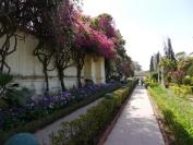 Indien_2012_Rajasthan_0195
