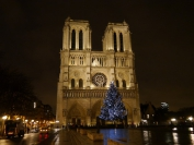 Paris_2012_0008
