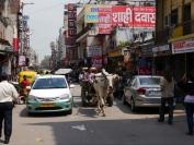 Indien_2014_115