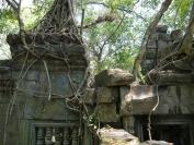 KambodschaT_2014_012