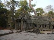 KambodschaT_2014_052