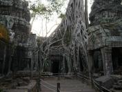 KambodschaT_2014_056
