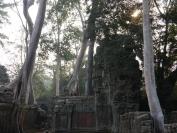 KambodschaT_2014_060