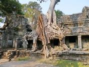 KambodschaT_2014_074