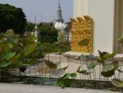 Kambodscha_2014_026
