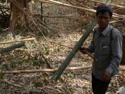 Kambodscha_2014_091