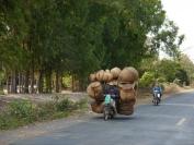 Kambodscha_2014_166