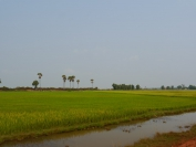 Kambodscha_2014_202