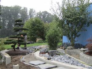 Gartenbonsai eingepflanzt