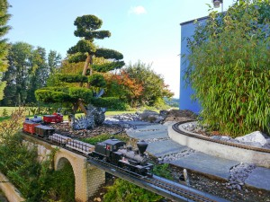 Gartenbonsai in Gartenbahn