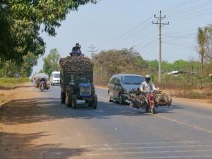 Phnom Penh - Senmonorom: Maniok-und Hühner-Transport