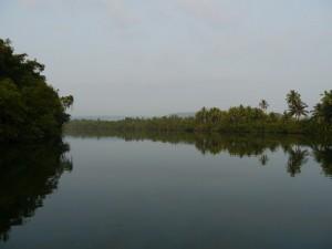 Koh Kong: 4 Rivers Floating Lodge, Morgenstimmung