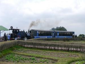 DHR: Dampfzug zwischen Darjeeling und Ghom