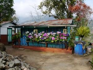 Glenburn: Teepflückerhaus