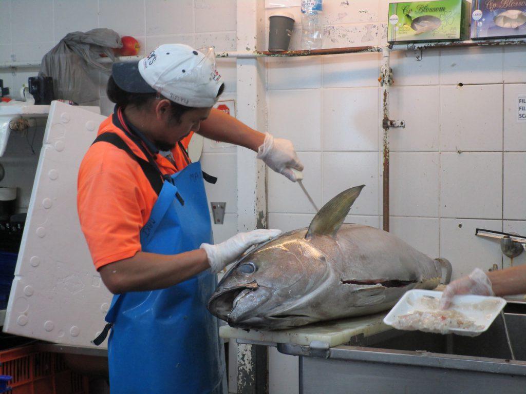 Sydney - Fischmarkt Tuhnfisch